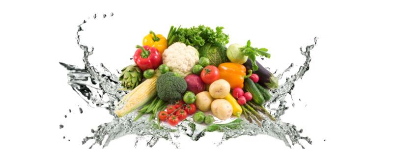diet banner